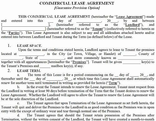 13 Mercial Lease Agreement Templates Excel Pdf formats