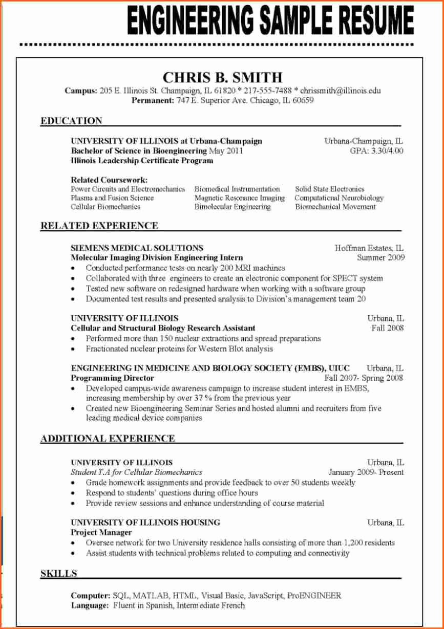 13 Resume format Examples 2016 Bud Template Letter