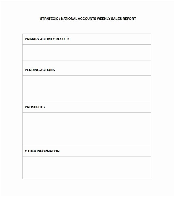 sales report template