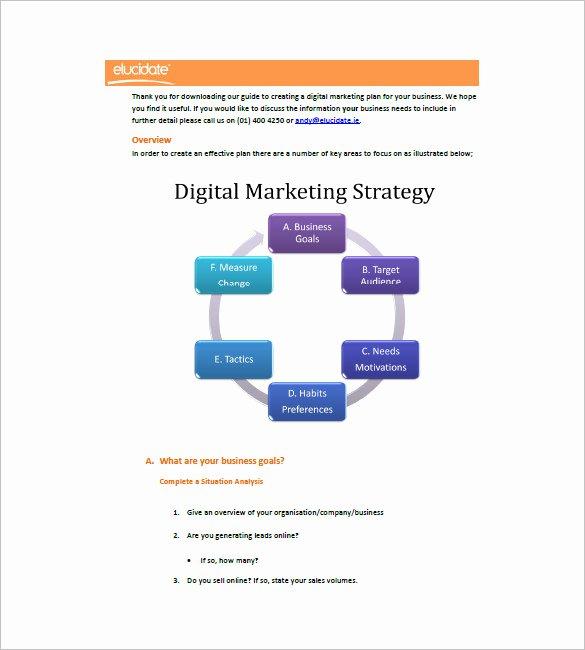 14 Digital Marketing Plan Templates Doc Pdf
