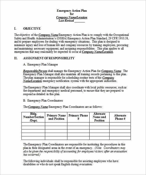 14 Emergency Action Plan Template Word Excel Pdf