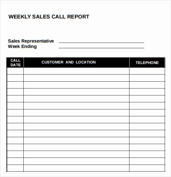 14 Sales Call Report Samples