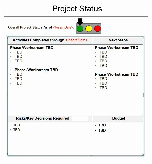 14 Sample Useful Project Status Report Templates