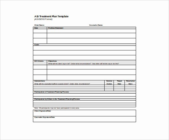 14 Treatment Plan Templates Sample Word Google Docs
