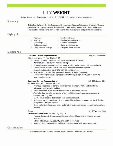 15 Amazing Customer Service Resume Examples