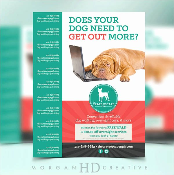 15 Dog Walking Flyer Templates Psd Vector Eps Ai