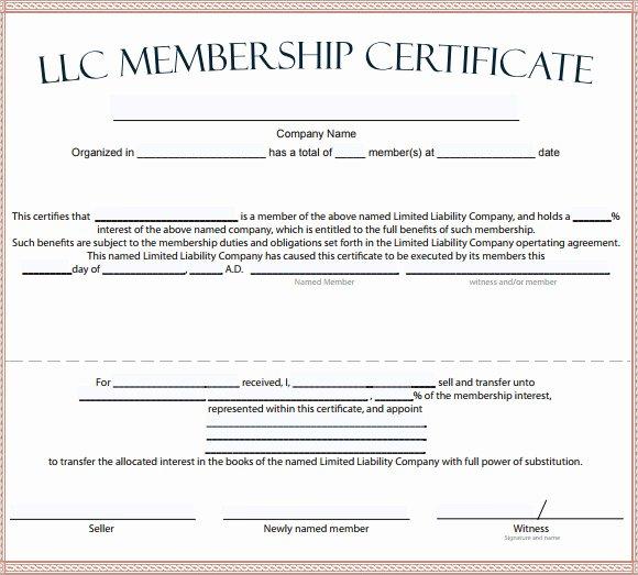 15 Membership Certificate Templates – Free Samples