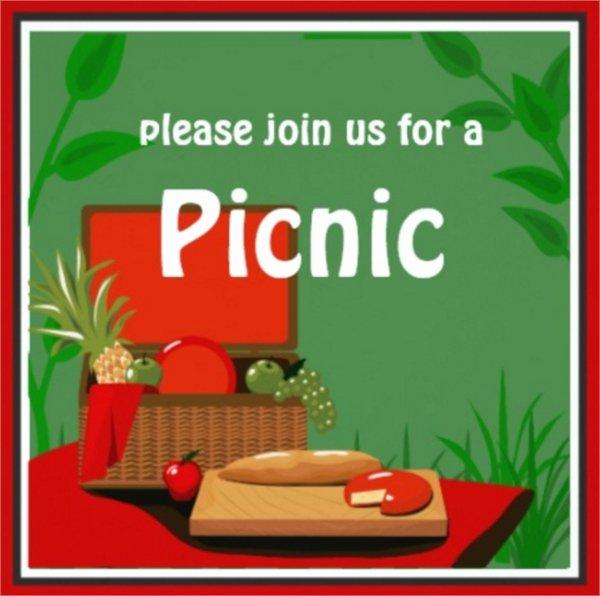 15 Picnic Invitations