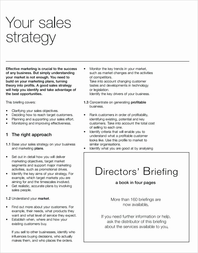 15 Sales Strategy Plan Template