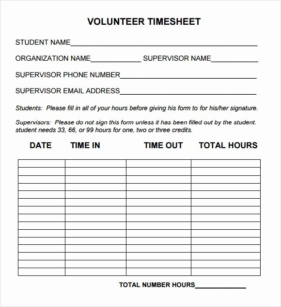 15 Sample Volunteer Timesheet Templates – Pdf Word