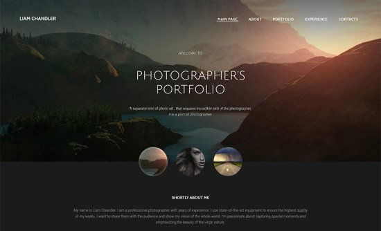 15 Stylish Design and Graphy Website Templates