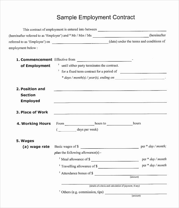 15 Useful Sample Employment Contract Templates to Download