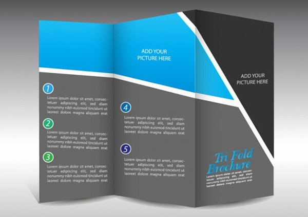 16 Free Graphics for Brochures Free Vector