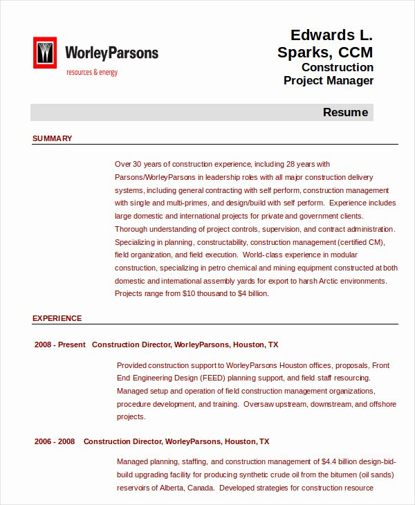 16 Free Sample Project Manager Resumes Best Resumes 2018