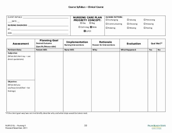 16 Of Patient Care Plan Template