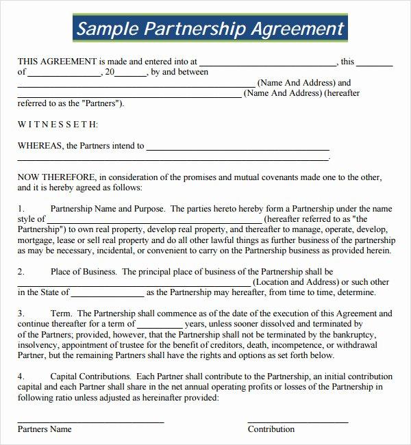 16 Partnership Agreement Templates