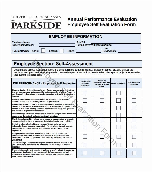 16 Sample Employee Self Evaluation form – Pdf Word