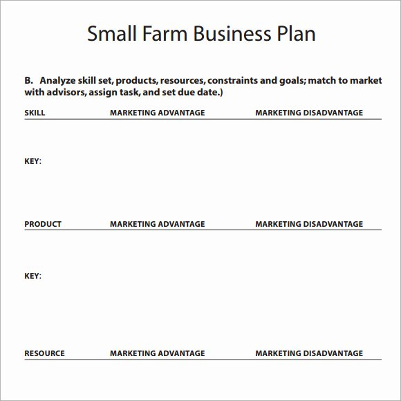 16 Sample Small Business Plans