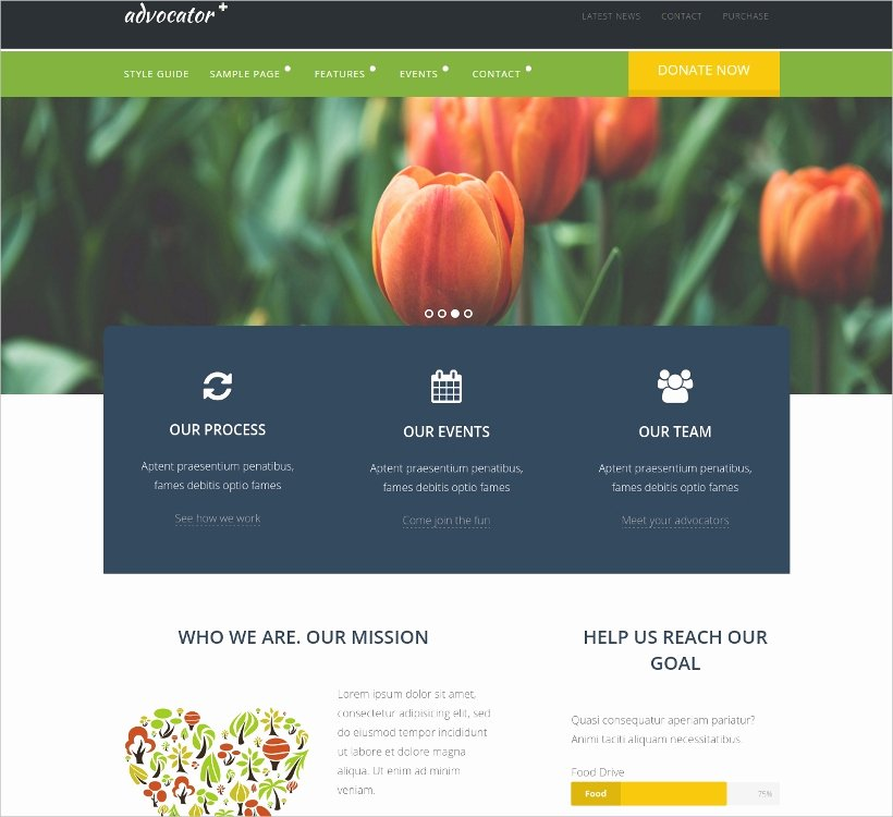 17 Best Non Profit Website themes & Templates