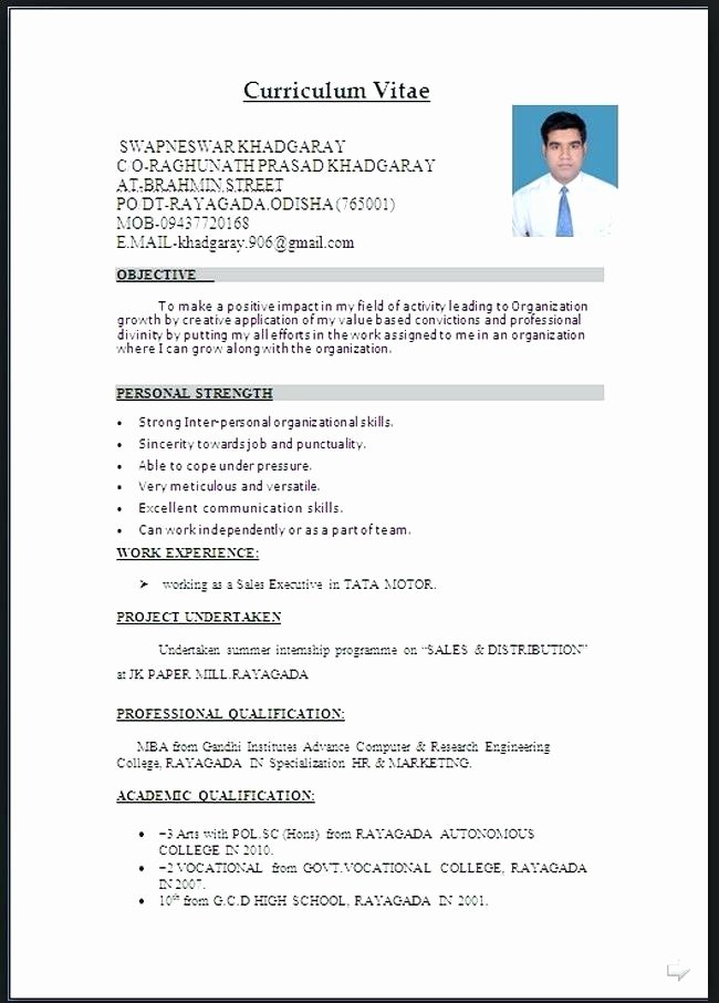 17 Cv format In Word Document