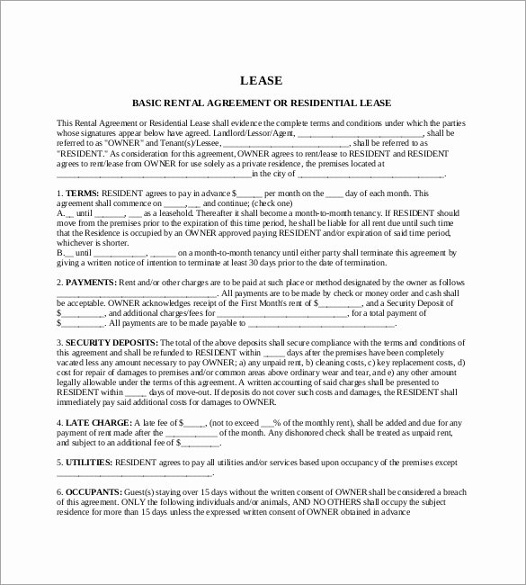 17 Lease Template Doc Pdf