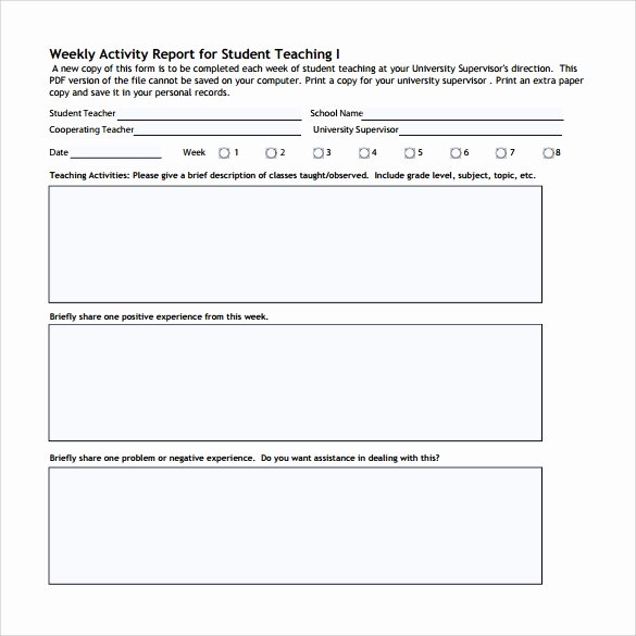 17 Sample Weekly Activity Reports – Pdf Word Apple
