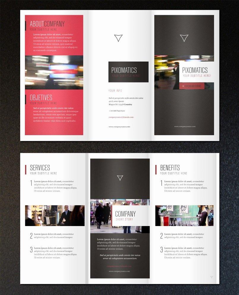 18 Best Free & Premium Brochure Templates