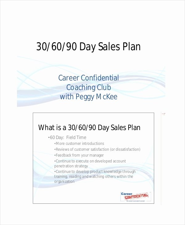 18 Examples Of 30 60 90 Day Plans Word Pdf
