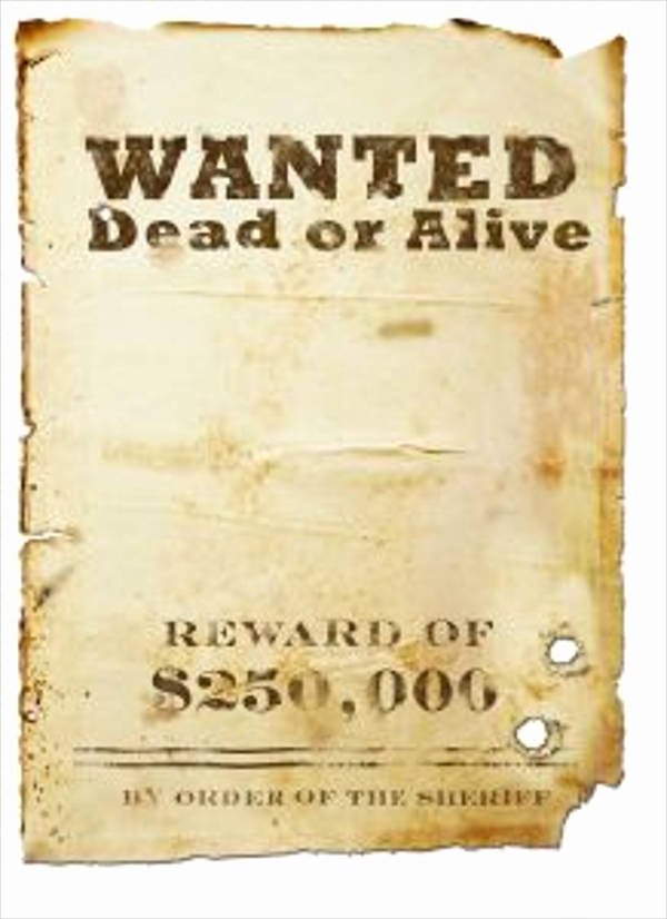 18 Wanted Poster Design Templates In Psd