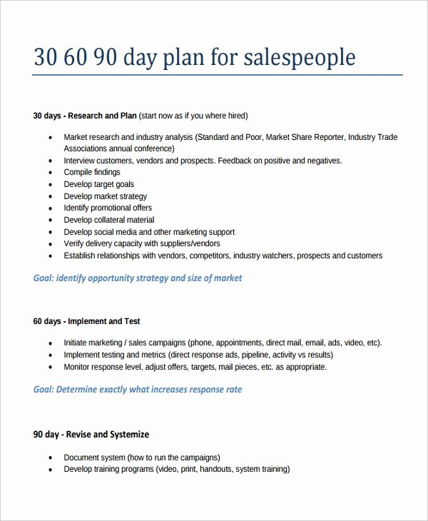 19 30 60 90 Day Action Plan Template Free Pdf Word
