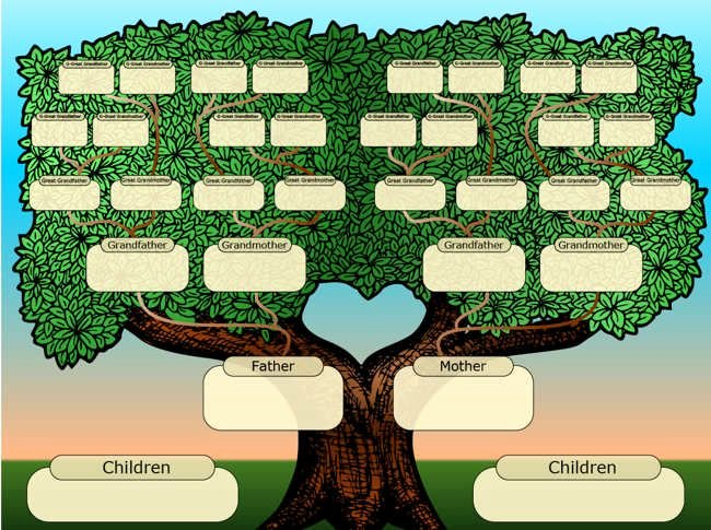 19 Best Images About Family Tree Maker Free On Pinterest