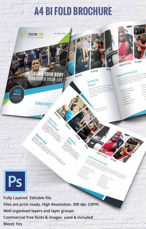 19 Bi Fold Brochure Templates – Free Word Pdf Psd Eps