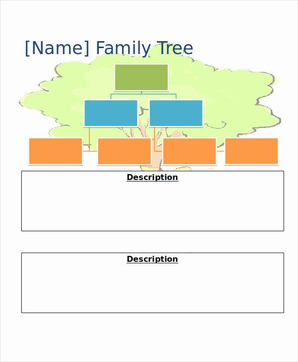 19 Family Tree Templates