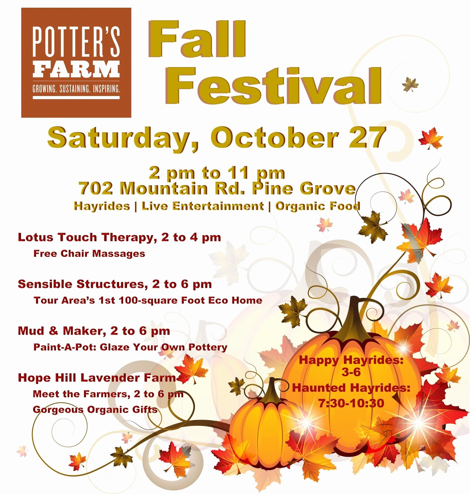 graphic relating to Free Printable Fall Festival Flyer Templates named Tumble Pageant Flyer Template Printable Flyers In just Phrase and