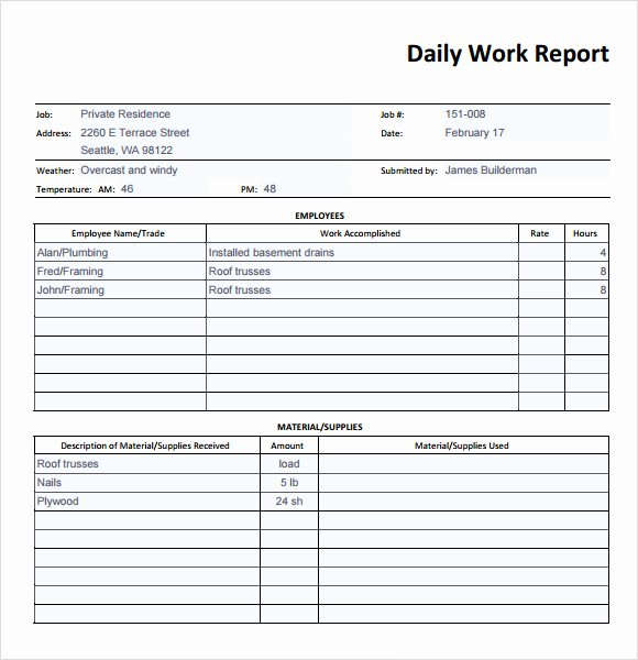 19 Sample Daily Reports