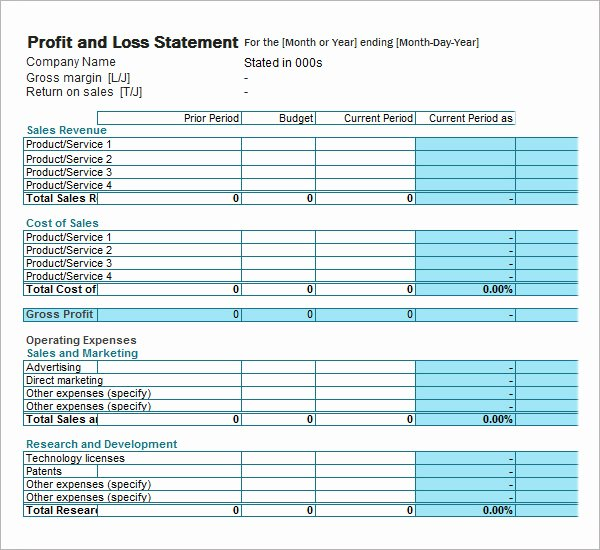 19 Sample Profit and Loss Templates