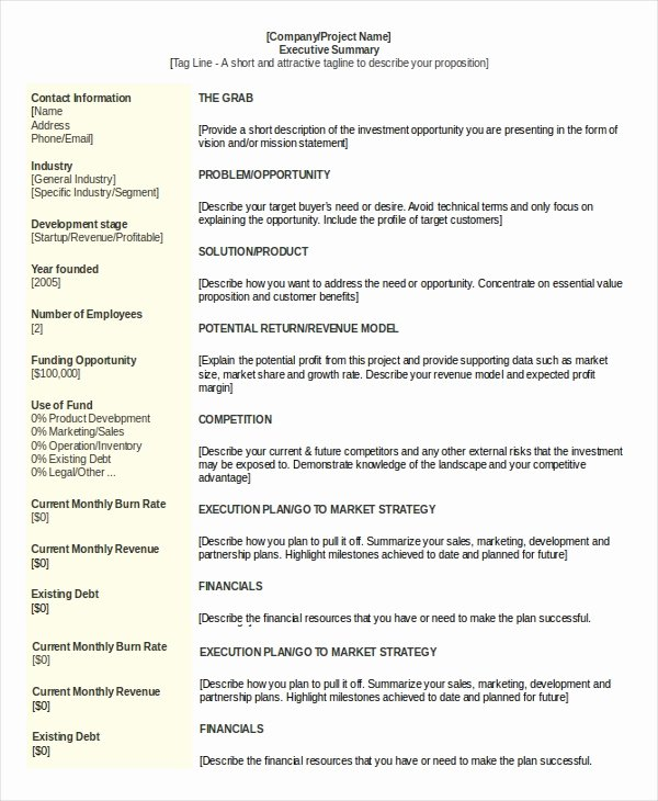 20 Executive Summary Templates