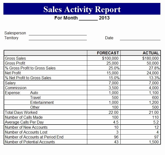 2013 Sales Activity Report Template Sample