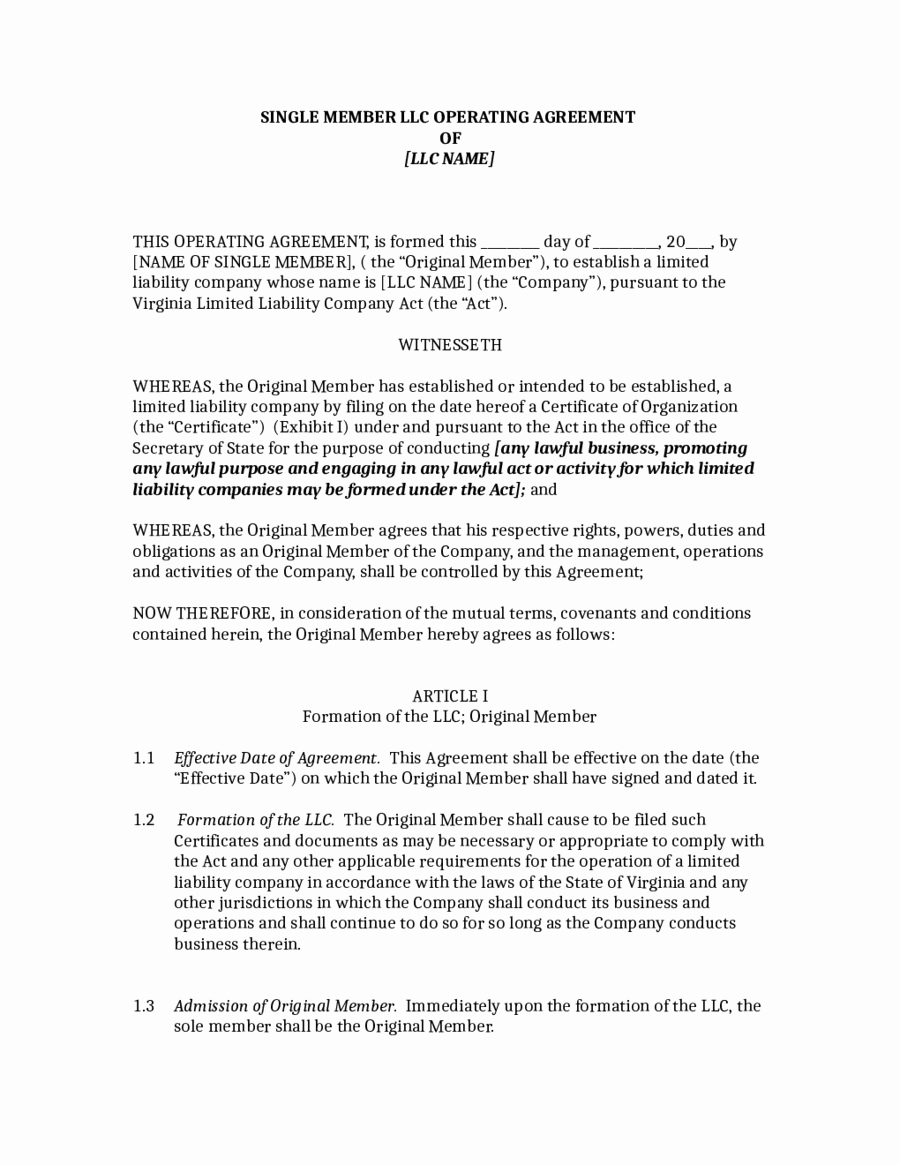 2018 Llc Operating Agreement Template Fillable