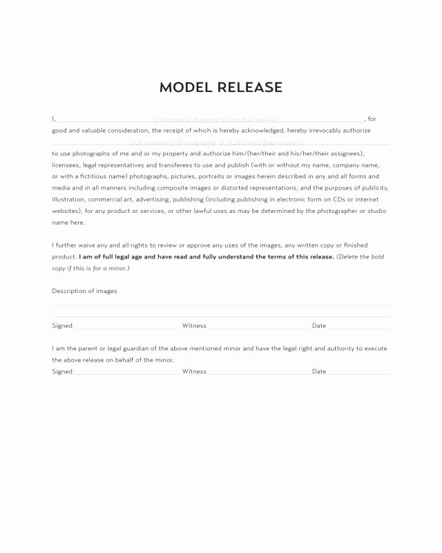 2019 Model Release form Fillable Printable Pdf & forms