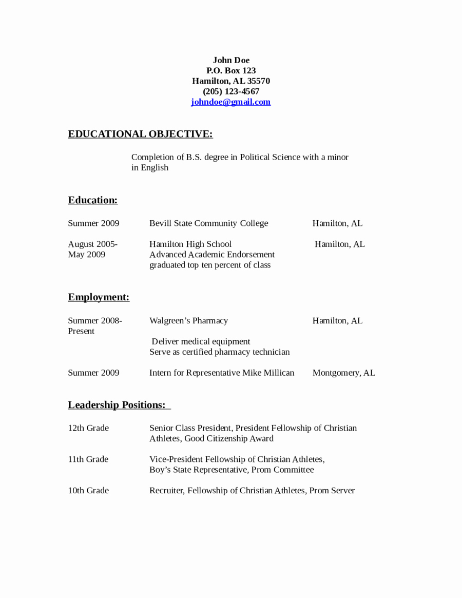 2019 Resume Objective Examples Fillable Printable Pdf