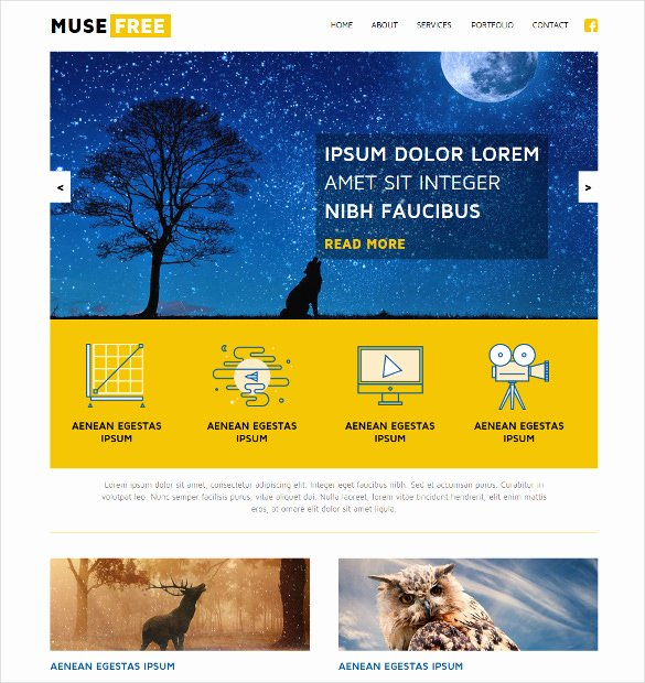 21 Free Muse themes & Templates