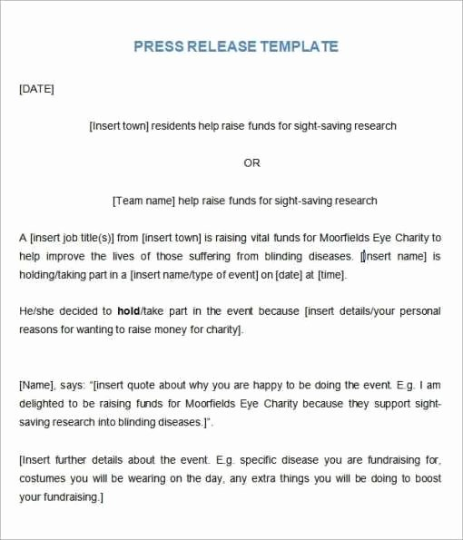 21 Free Press Release Template Word Excel formats