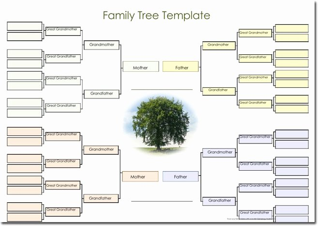 21 Genogram Templates Easily Create Family Charts