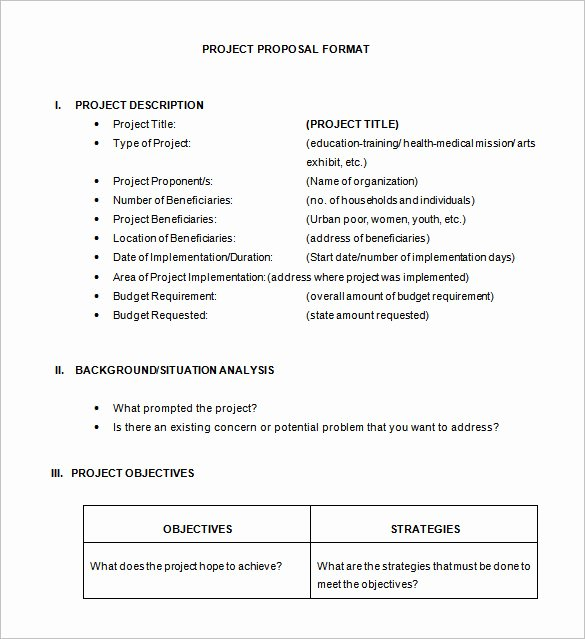 21 Project Proposal Templates Pdf Doc