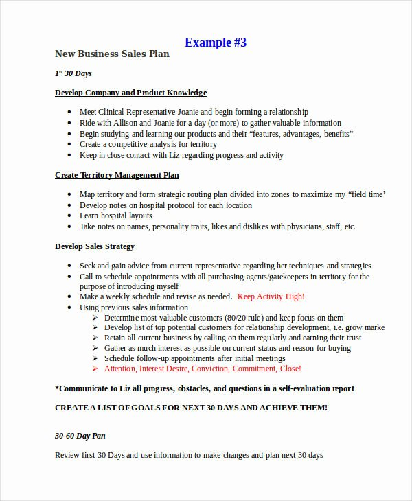 21 Sales Plan Examples Pdf Word Pages