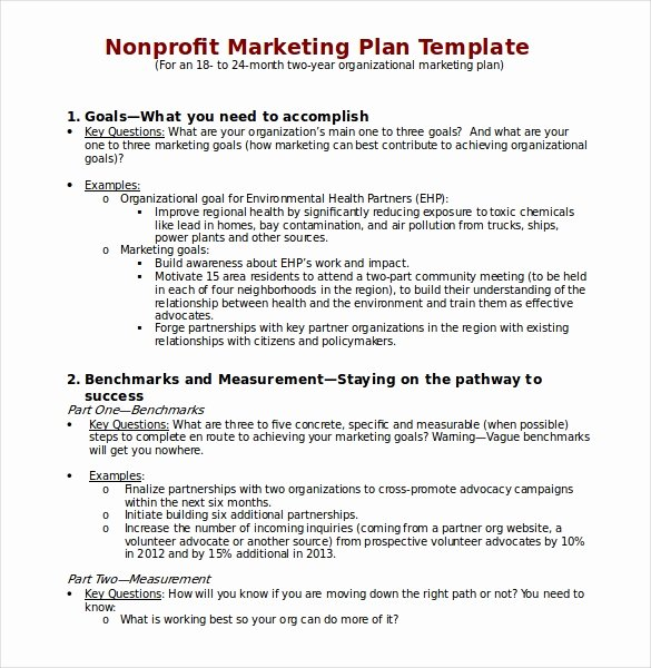 22 Microsoft Word Marketing Plan Templates