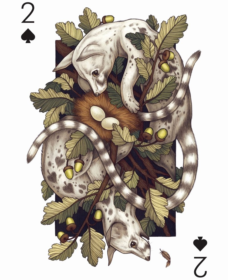 22 Playing Card Designs