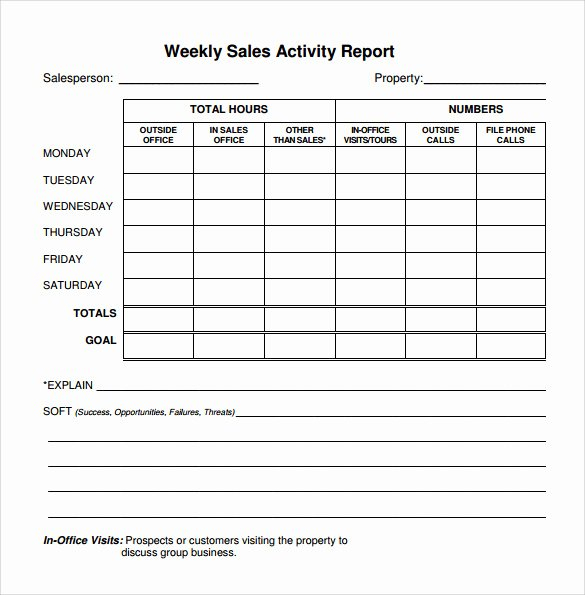 22 Sample Weekly Report Templates – Pdf Word Pages