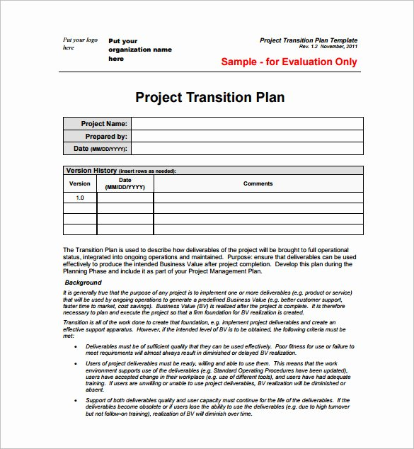 23 Project Plan Template Doc Excel Pdf